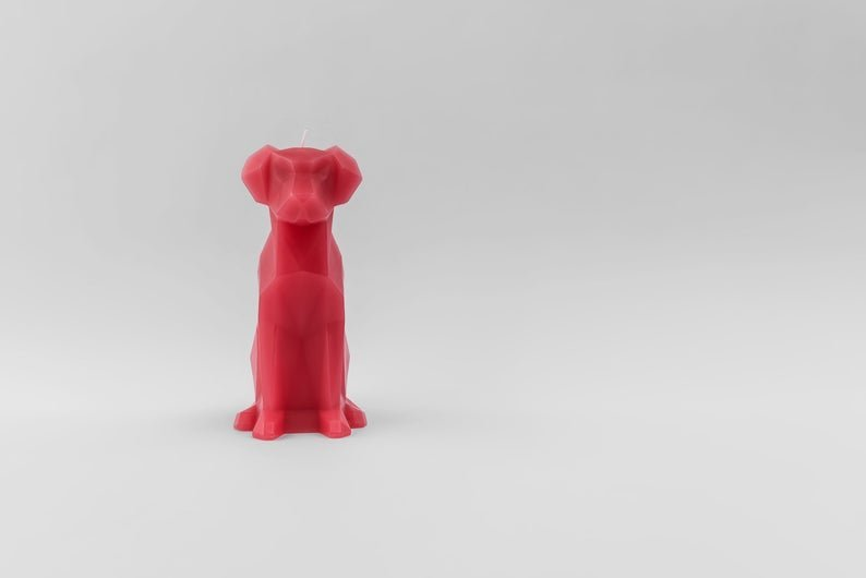 PyroPet Voffi Dog Candle Berry Review
